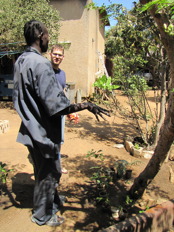Le tour du jardin senegal daily for Le jardin dakar